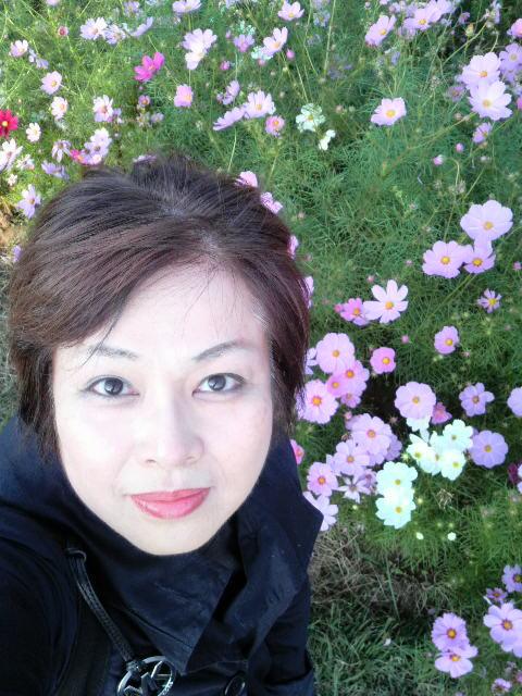 秋桜秋〜冬へ