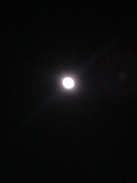 Moonlight Spirits